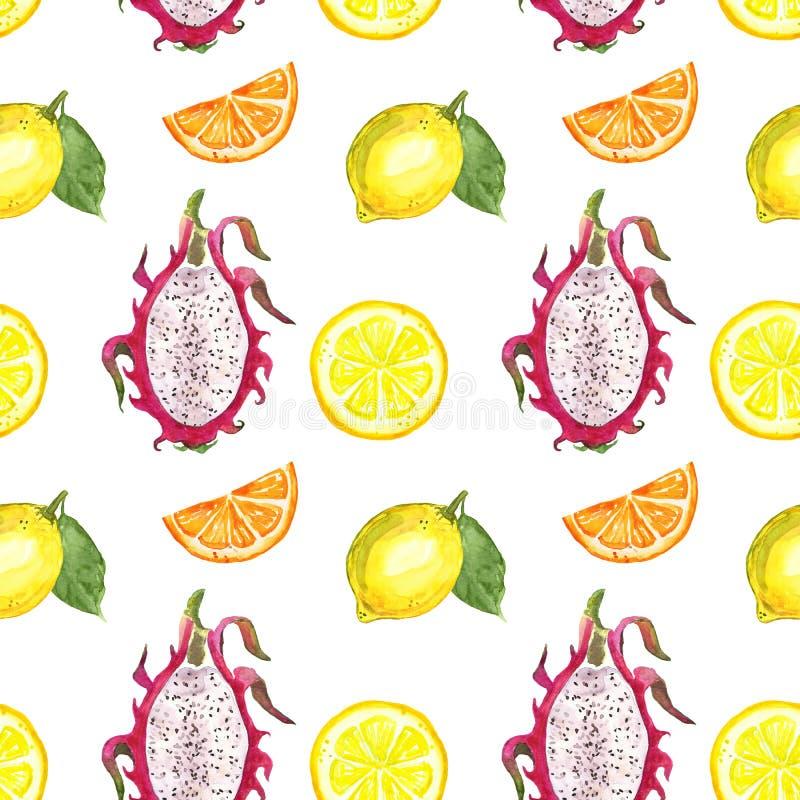 Sömlös modell med isolerade vattenfärgsommarfrukter - citrus skiva, citron, apelsin, drakefrukt på vit bakgrund vektor illustrationer
