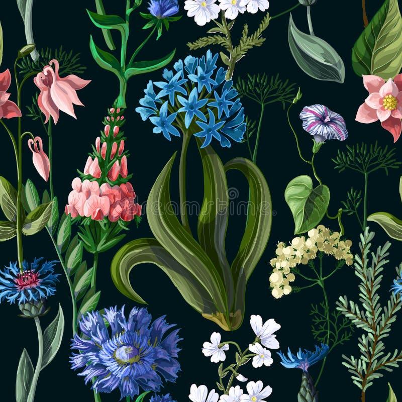 Sömlös modell med lösa blommor på en mörk bakgrund också vektor för coreldrawillustration royaltyfri illustrationer