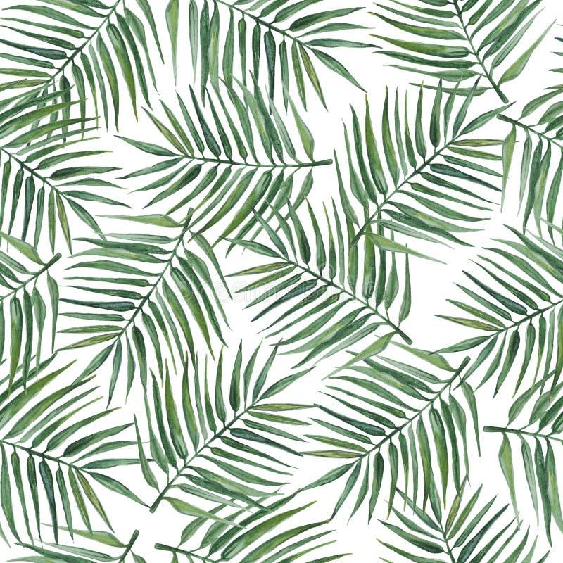 Sömlös modell med palmblad för flygillustration för näbb dekorativ bild dess paper stycksvalavattenfärg stock illustrationer
