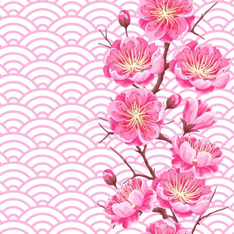 Sömlös modell med sakura eller den körsbärsröda blomningen Blom- japansk prydnad av att blomma blommor stock illustrationer