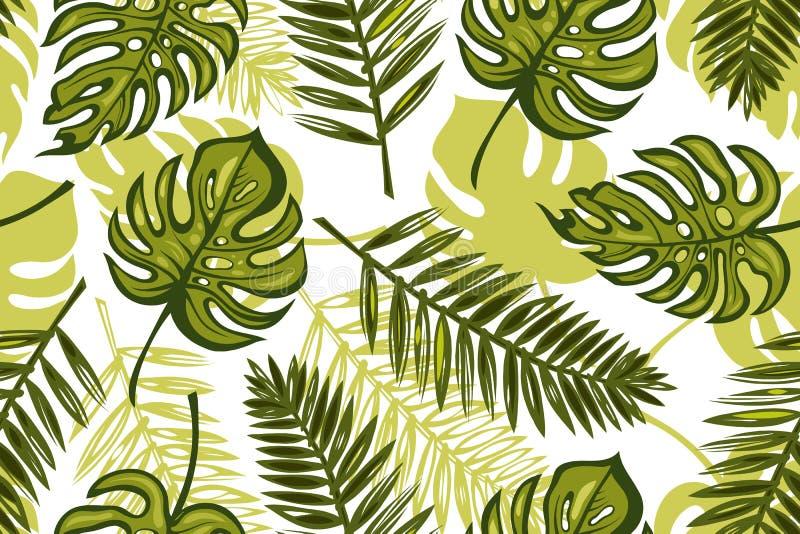 Sömlös modell med sidamonsteraen, palmträd tropisk bakgrund Textur för tapeten, vykort, tyg, papper som skrivar ut vektor illustrationer
