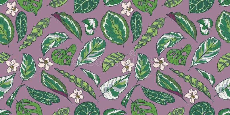 Sömlös modell med sidor och blommor för tropisk Calathea, pothos- och Monstera växt på purpurfärgad bakgrund royaltyfri illustrationer