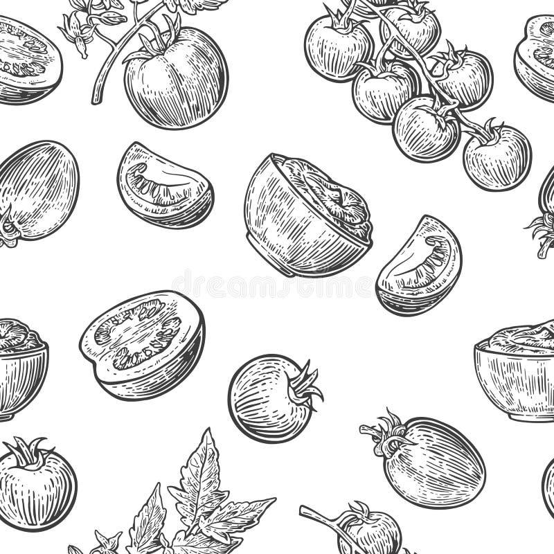 Sömlös modell med tomaten, halvt och skivan Svartvit färg Dragen tappningvektorhand inrista illustrationen stock illustrationer