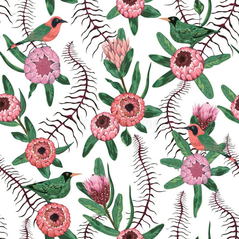 Sömlös modell med tropiska fåglar, lianen, proteablommor och sidor Exotisk botanisk bakgrund royaltyfri illustrationer