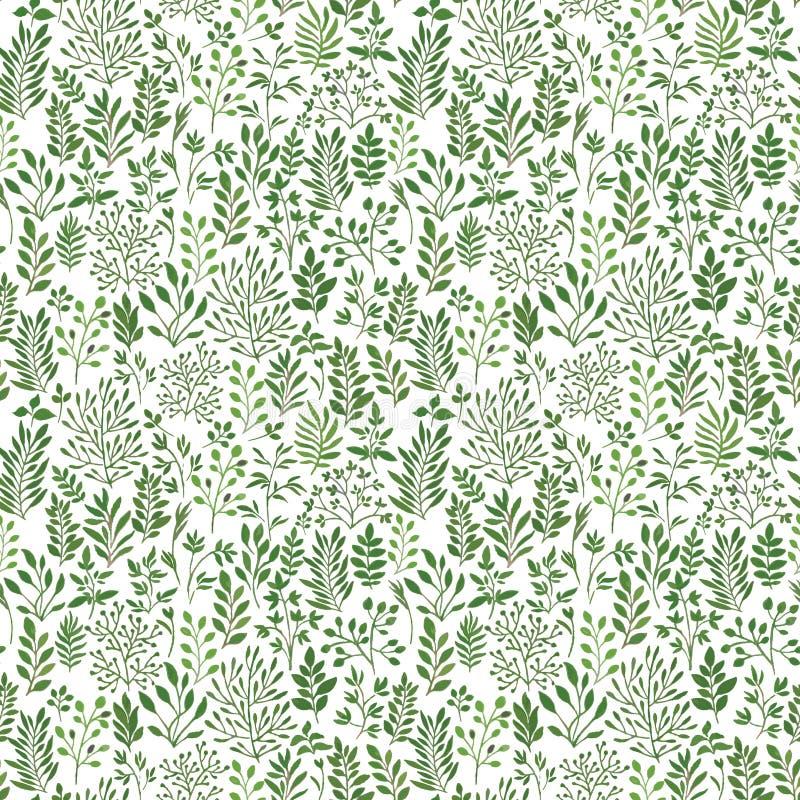 Sömlös modell med växter vektor illustrationer