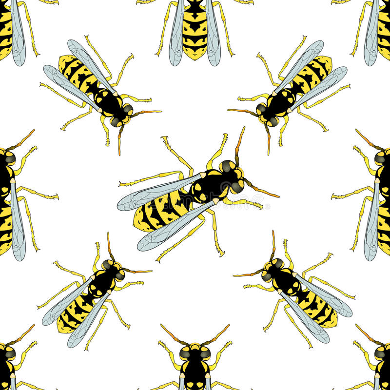 Sömlös modell med Wasp hand-drog Wasp vektor royaltyfri illustrationer