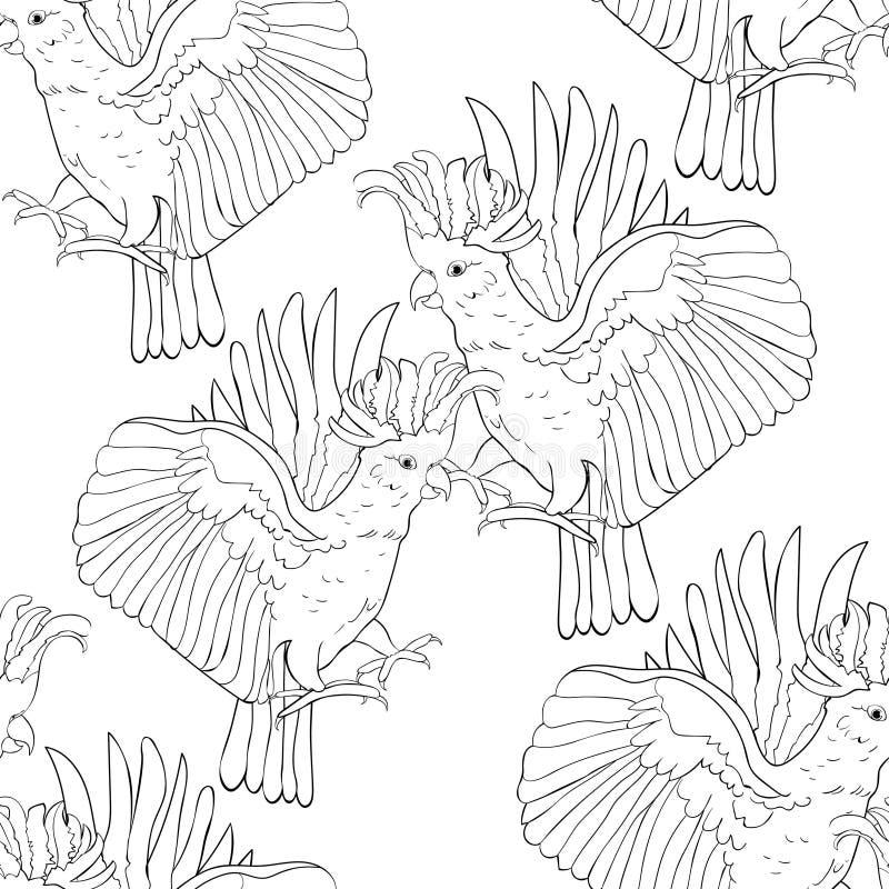 Sömlös modell som färgar den exotiska incaen för kakaduapapegoja Vektor mig royaltyfri illustrationer