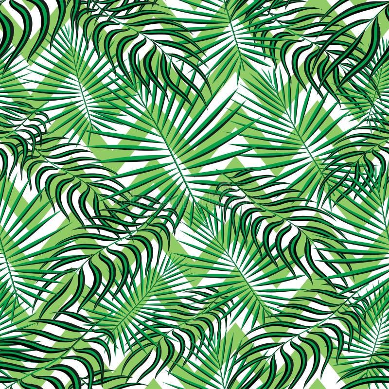 Sömlös modellbakgrund för tropikerna Moderna exotiska tropiska sidor, bakgrundmodell med sömlösa sicksacklinjer Färgrik sommar vektor illustrationer