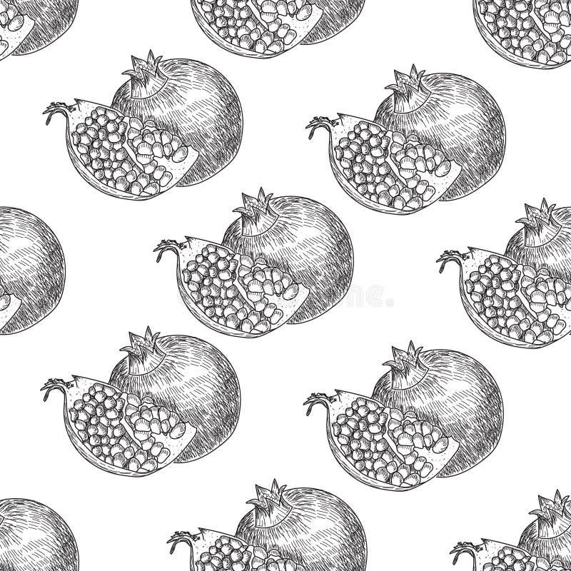 Sömlös modellgranatäpplefrukt, bär Sund mat för organisk näring Inristad hand dragen retro vektor för tappning royaltyfri illustrationer