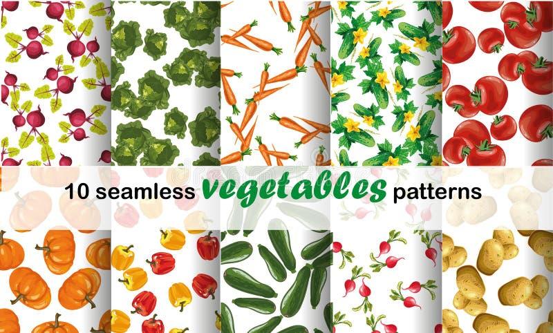 Sömlös modellsamlingsuppsättning med kulöra grönsaker vatten för vektor för ny illustration för design ditt naturligt royaltyfri illustrationer