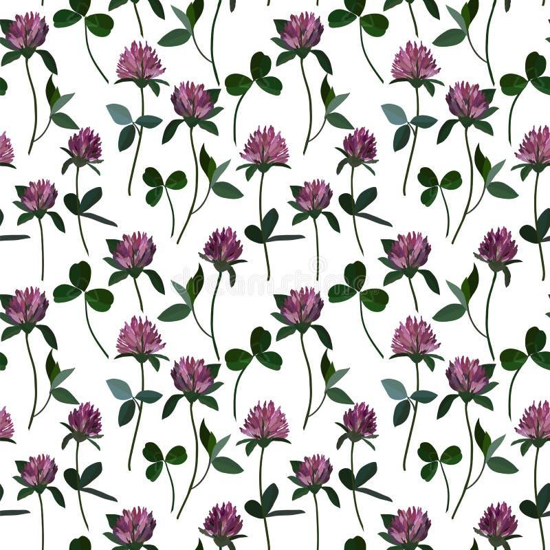 Sömlös modellväxt av släktet Trifolium royaltyfri illustrationer