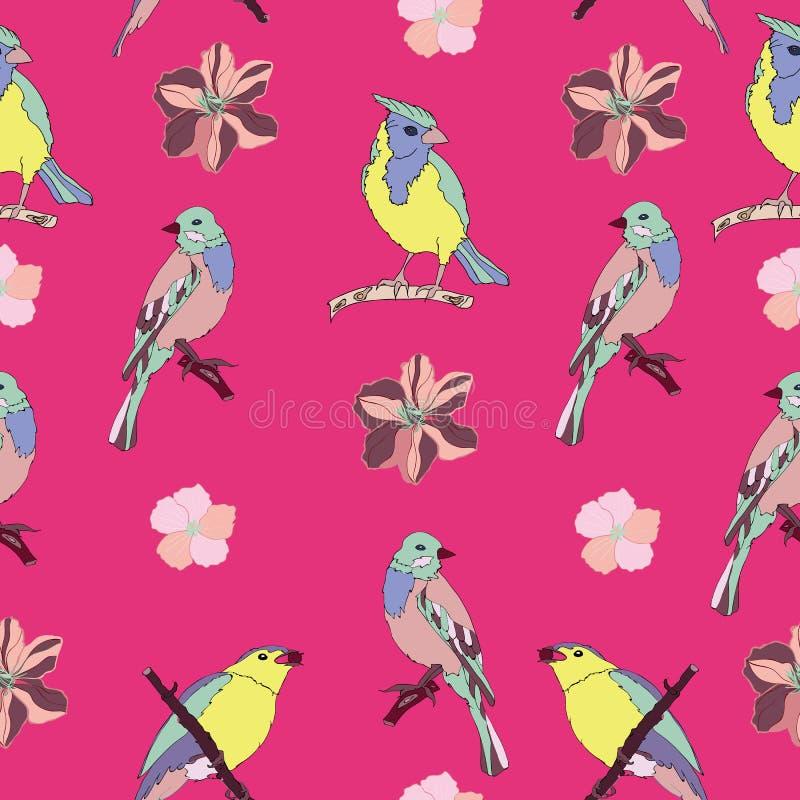 Sömlös modellvektor för härliga och färgrika fåglar royaltyfri illustrationer