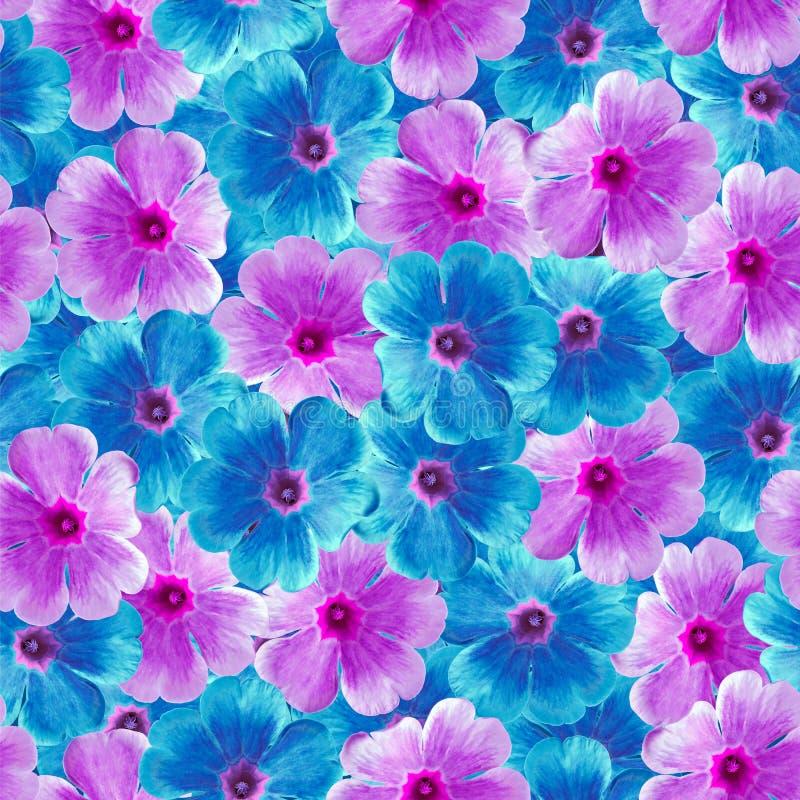 Sömlös oändlig blom- bakgrund för design och printing Bakgrund av naturliga blåa och purpurfärgade Violets arkivbilder
