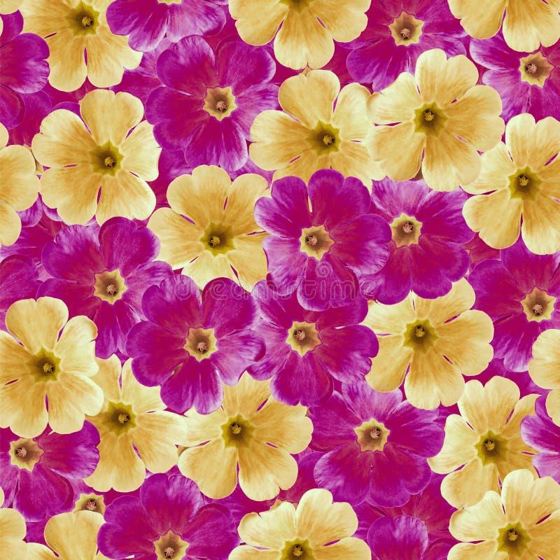 Sömlös oändlig blom- bakgrund för design och printing Bakgrund av naturliga orange och purpurfärgade Violets royaltyfri fotografi