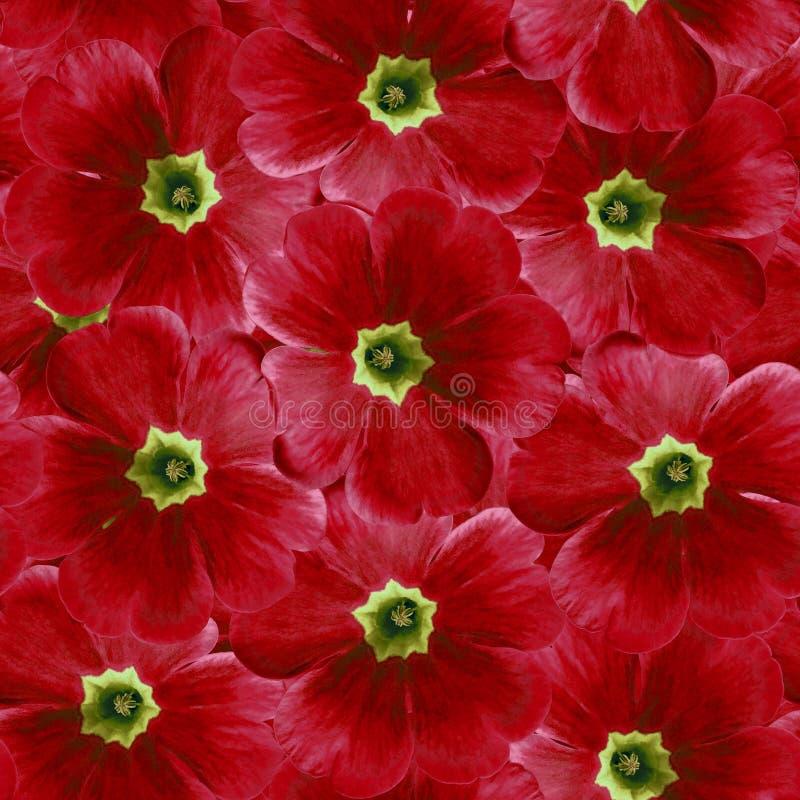 Sömlös oändlig blom- bakgrund för design och printing Bakgrund av naturliga röda Violets arkivbild