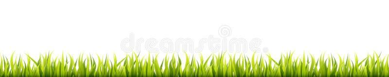 Sömlös sommargräspanorama Växt- gräsmatta för grön vår Fält- eller änghorisontalgarneringlinjer royaltyfri illustrationer