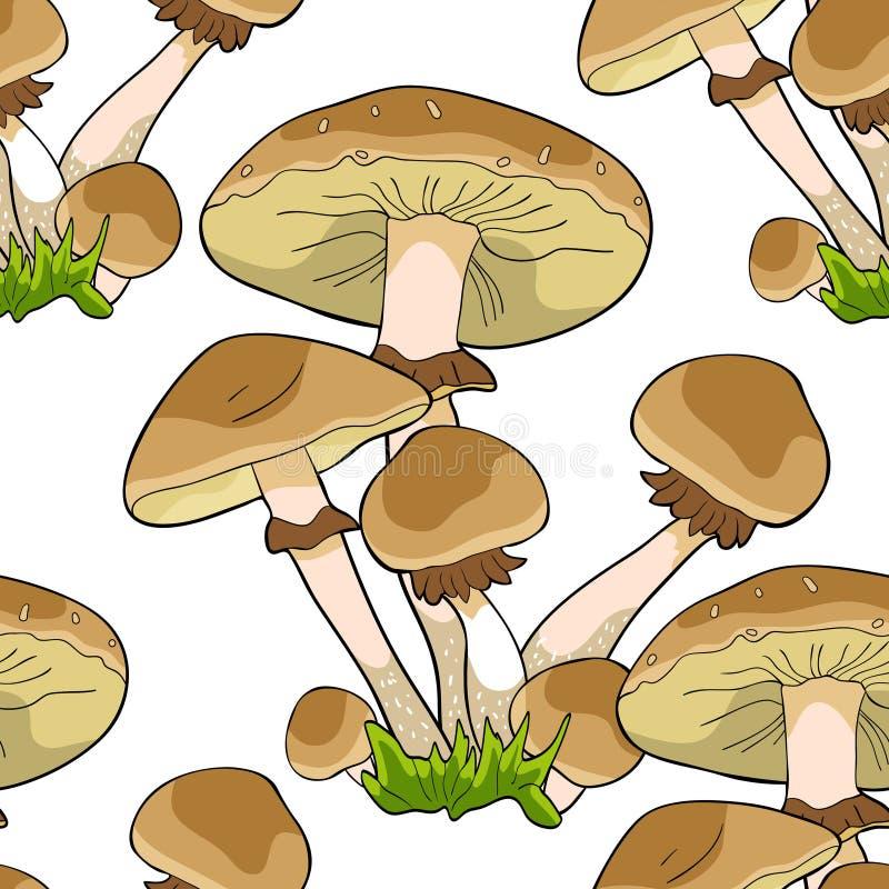 Sömlös svamp för agaric för modellchampinjonhonung Vektorillustrat royaltyfri illustrationer
