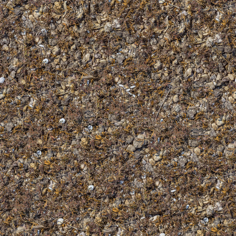 Sömlös textur av Rocky Soil. royaltyfri bild