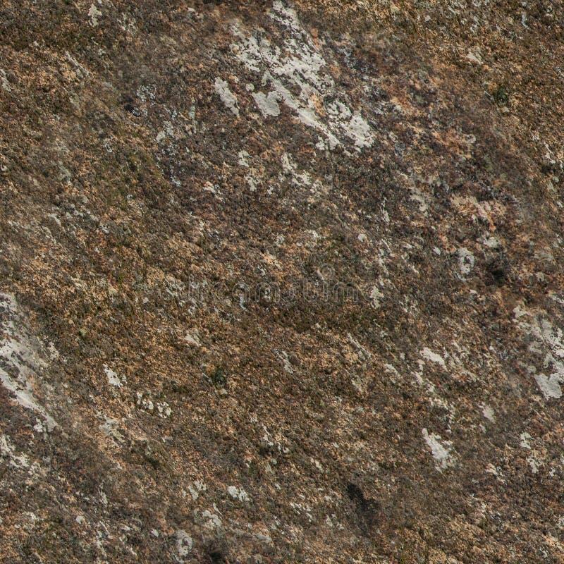 Sömlös textur av vaggar och stenar arkivfoto