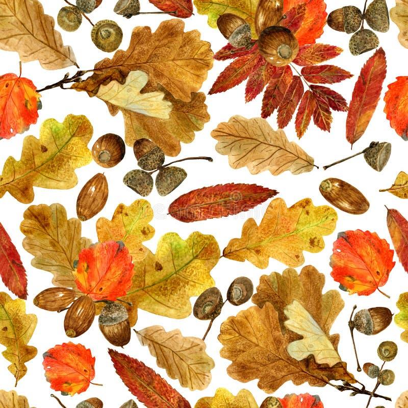 Sömlös textur av vattenfärgnedgångeken, rönnen, asp- sidor och ekollonar Ljust hösttryck med naturliga beståndsdelar vektor illustrationer