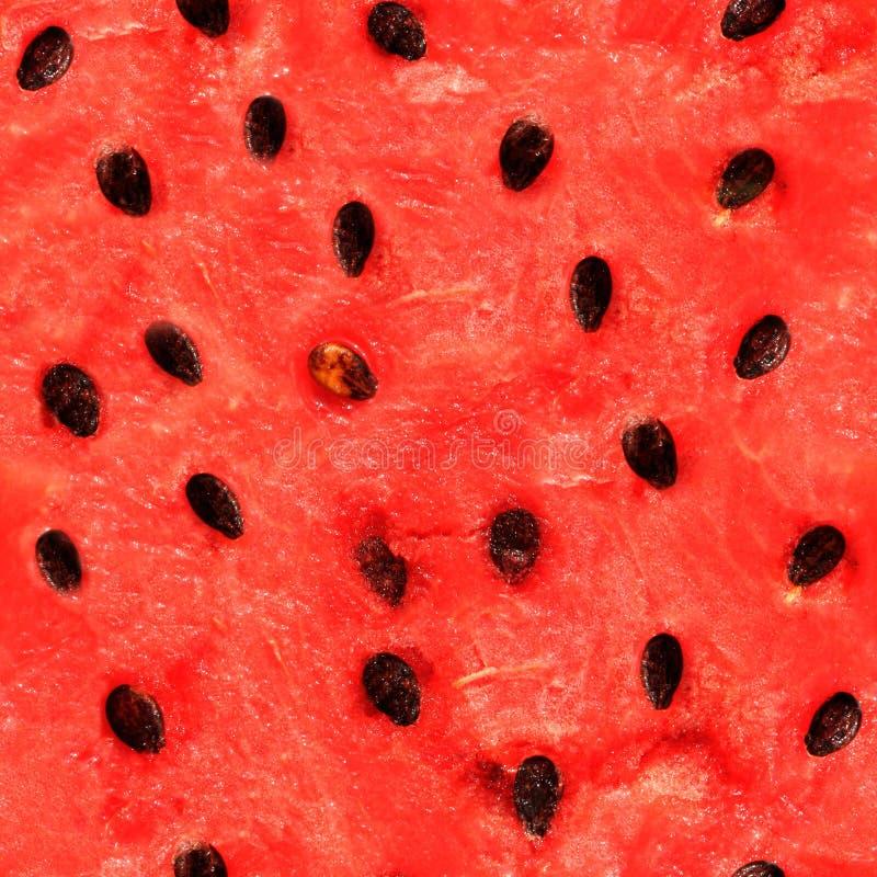 Sömlös textur av vattenmelon royaltyfri bild