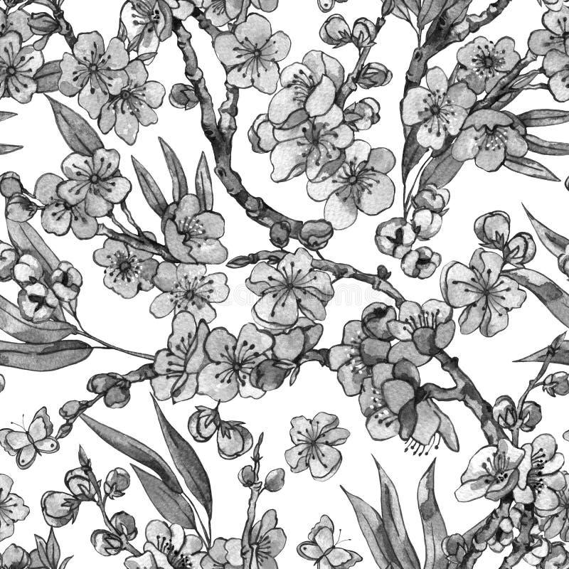 Sömlös träsko för vattenfärgvår, blom- bukett för tappning med b royaltyfri illustrationer