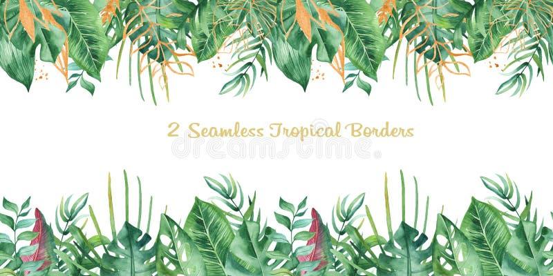 Sömlös tropisk gräns för vattenfärg vektor illustrationer