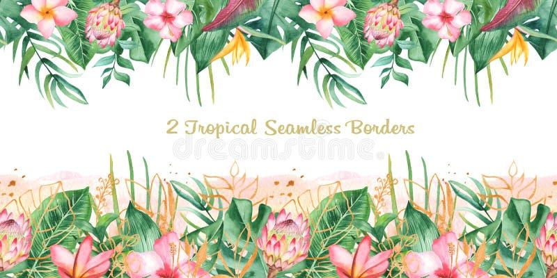 Sömlös tropisk gräns för vattenfärg royaltyfri illustrationer
