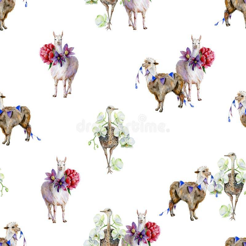 Sömlös tropisk modell för vattenfärg av alpaca med pioner, strutsen med orkidér och tecknad filmlaman royaltyfri illustrationer