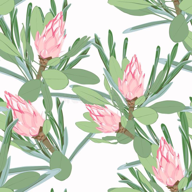 Sömlös tropisk modell för vektor, livlig vändkretslövverk, med den rosa proteablomman i blom modern ljus sommartryckdesign royaltyfri illustrationer