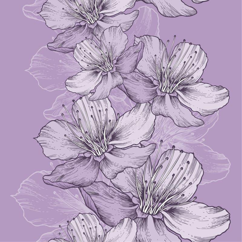 Sömlös vårbakgrund med blommor av äpplet, hand-teckning royaltyfri illustrationer