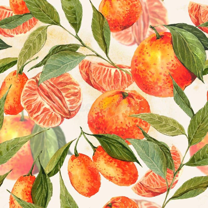 Sömlös vattenfärgbakgrund med apelsiner vektor illustrationer