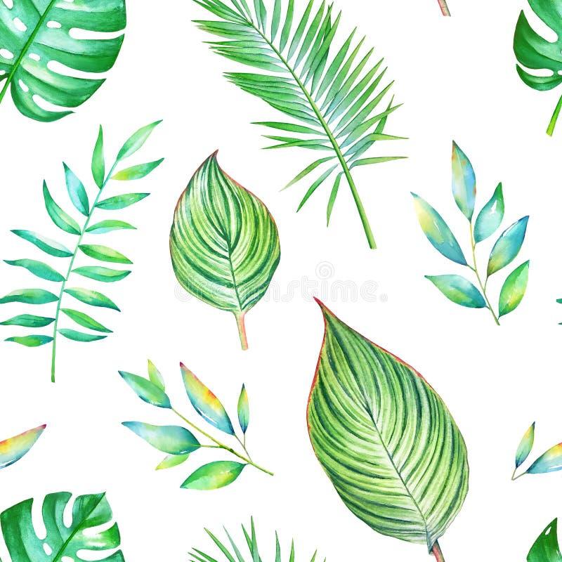 Sömlös vattenfärgmodell med gröna tropiska sidor stock illustrationer