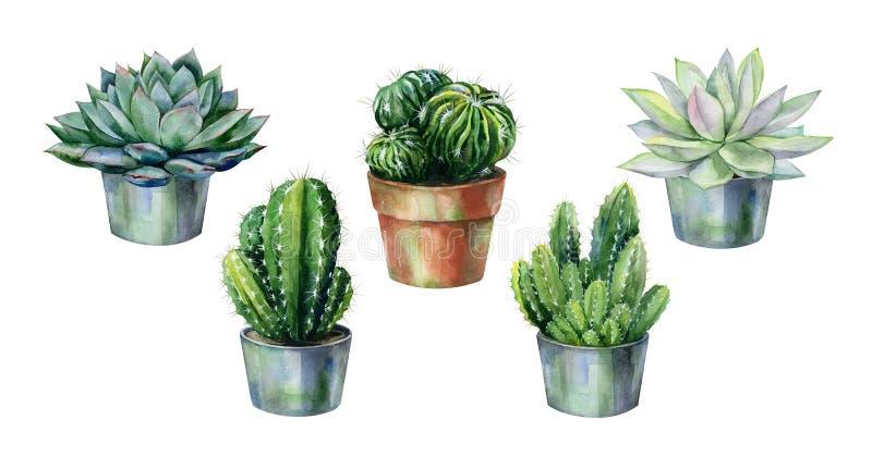 Sömlös vattenfärgmodell med kaktuns och suckulenter i krukor stock illustrationer