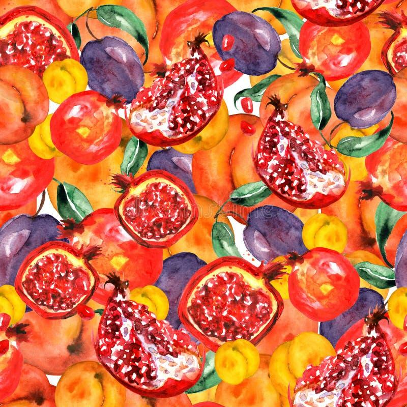 Sömlös vattenfärgmodell med skivafrukter, granatäpplefrukt, persikafrukt, plommon, aprikos, vattenmelon Orange purpurfärgat royaltyfri illustrationer