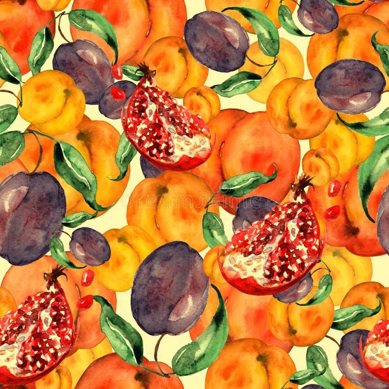 Sömlös vattenfärgmodell med skivafrukter, granatäpplefrukt, persikafrukt, plommon, aprikos, vattenmelon Orange purpurfärgat stock illustrationer