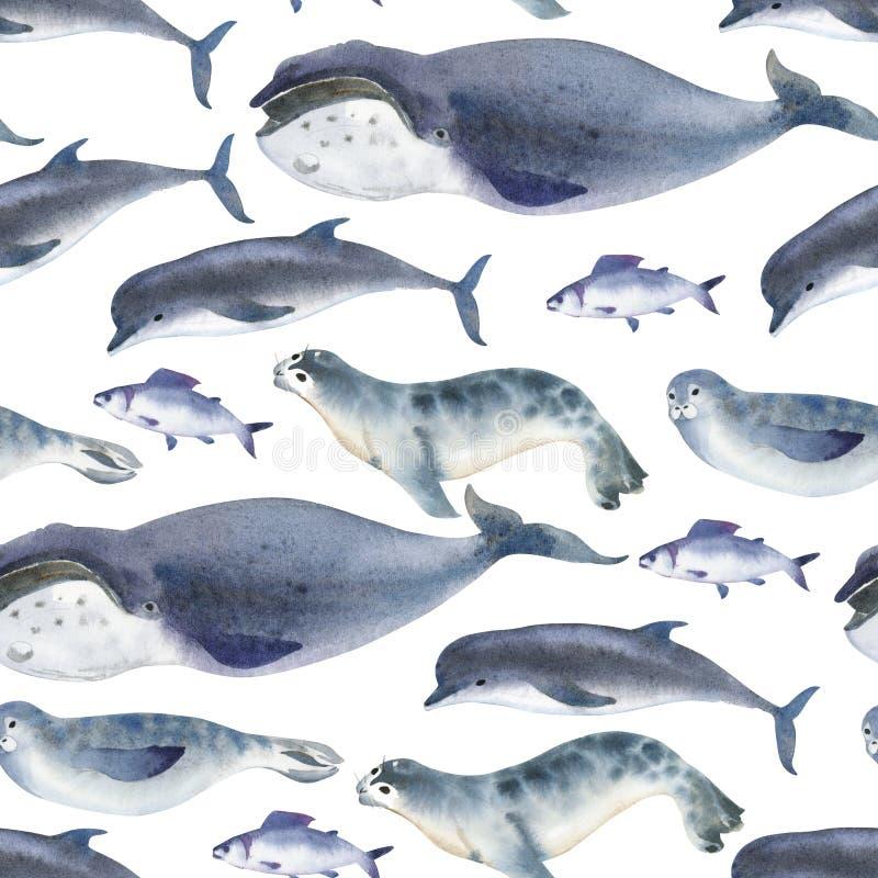 Sömlös vattenfärgmodell om havsfaunor Marin- djur Delfin, val, fisk och skyddsremsa på vit bakgrund royaltyfri illustrationer