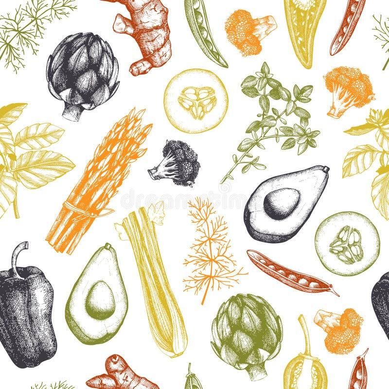 Sömlös vektormodell med grönsaker och kryddor för hand utdragna Organisk mat skissar Bakgrund för tappningkitchekörter stock illustrationer