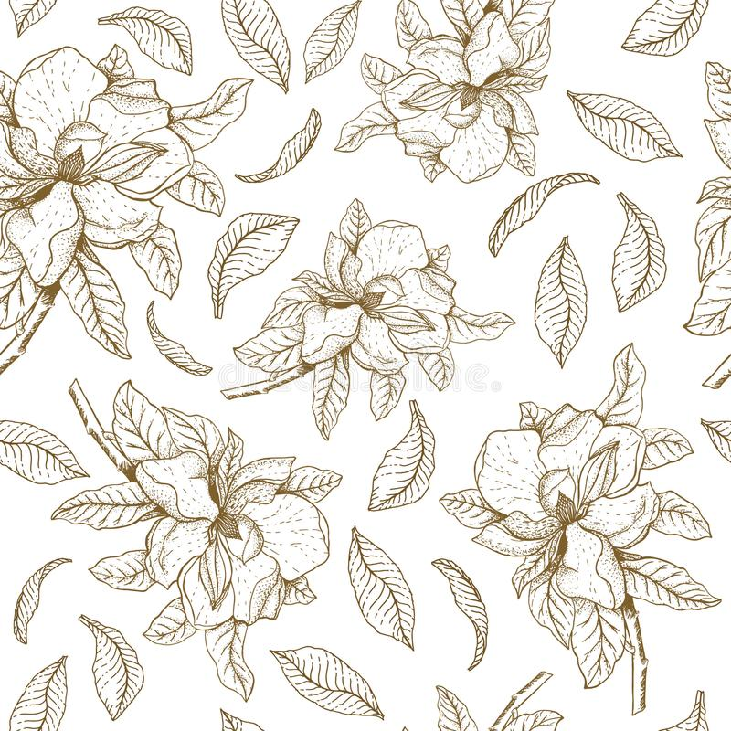 Sömlös vektormodell med magnolian och sidor Botanisk illustration vektor illustrationer