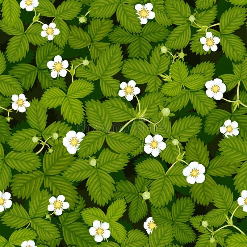 Sömlös vektortextur av vårjordgubbeängen med vita blommor och gröna sidor, bästa sikt arkivbilder