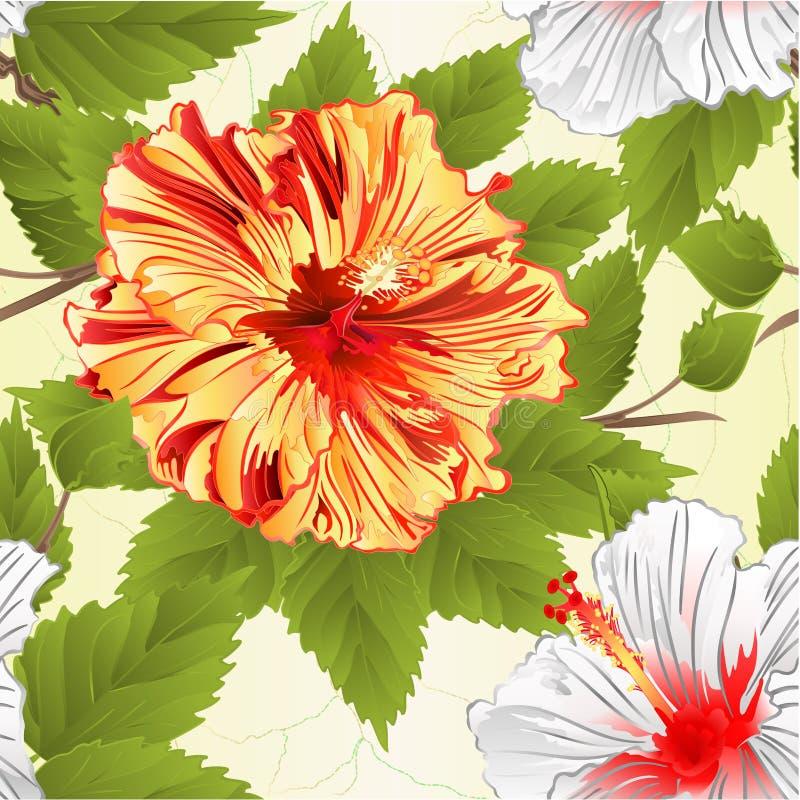 Sömlösa gula texturstammar och illustration för vektor för tappning för naturlig bakgrund för blommor för vit hibiskus redigerbar vektor illustrationer