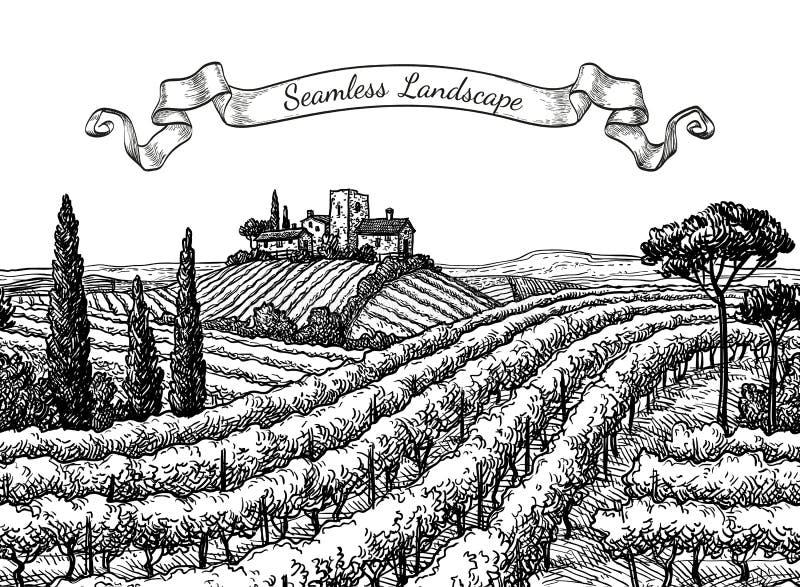 Sömlöst landskap för vingård vektor illustrationer
