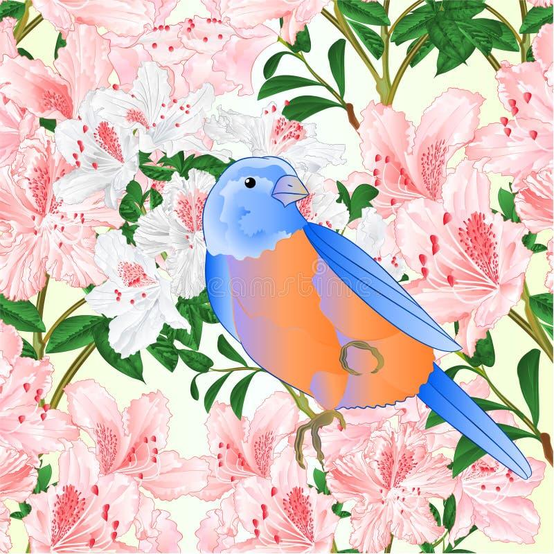Sömlöst texturljus - rosa redigerbara rhododendronfilial och liten illustration för vektor för tappning för songbirdonblåsångaret royaltyfri illustrationer