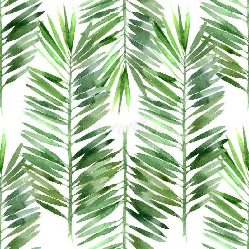Sömlöst vattenfärgpalmträdblad vektor illustrationer