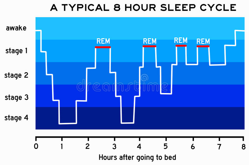 Sömncirkulering royaltyfri illustrationer