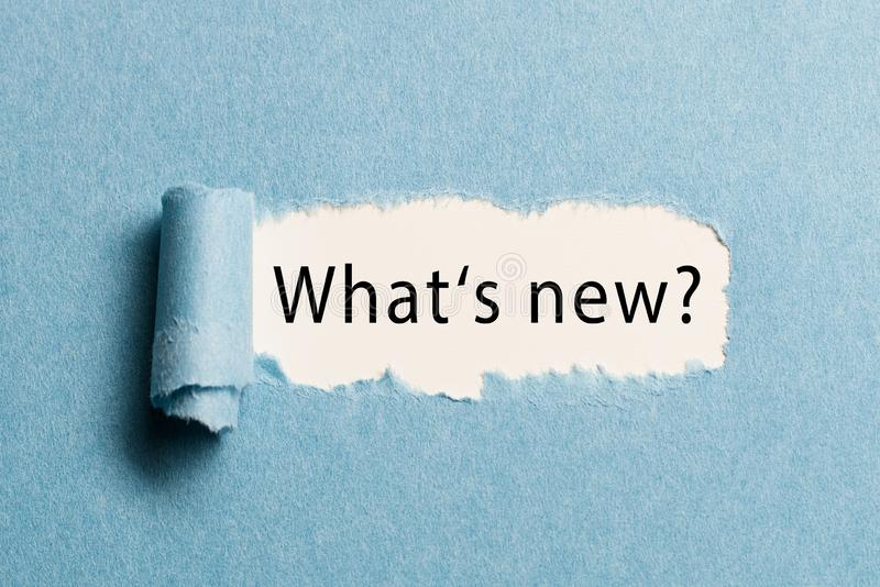 Sönderrivet papper som avslöjer uttrycket 'vad är ny? ', royaltyfria bilder