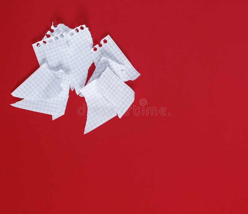 Sönderrivet till stycken ett vitt ark av papper på en röd bakgrund royaltyfri fotografi