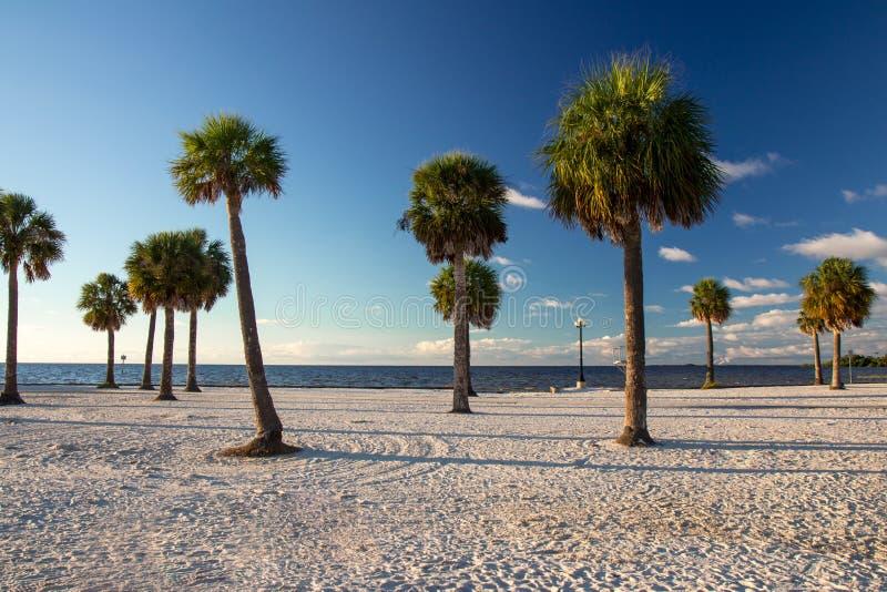 Sörja ön Florida royaltyfri foto