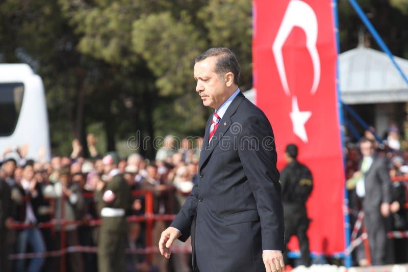 sörja för den satta i gång turken royaltyfri bild