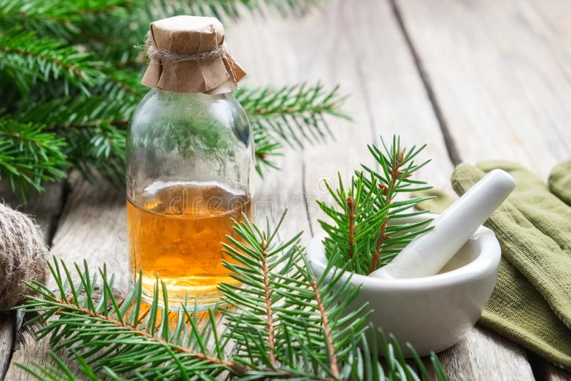 Sörja nödvändig olja i en glasflaska Barrträdfilialer, handskar och mortel royaltyfri foto